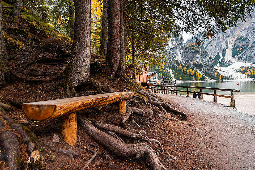 Download Wooden Bench Near Lago di Braies FREE Stock Photo