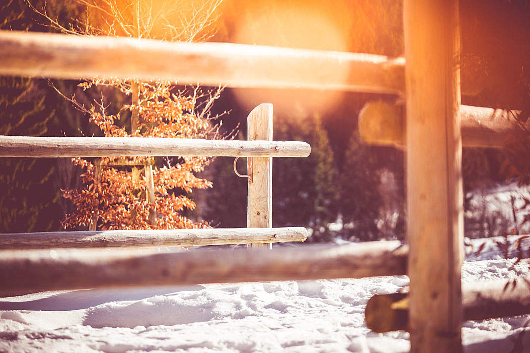 Download Wooden Fence on Mountain Path in Winter FREE Stock Photo