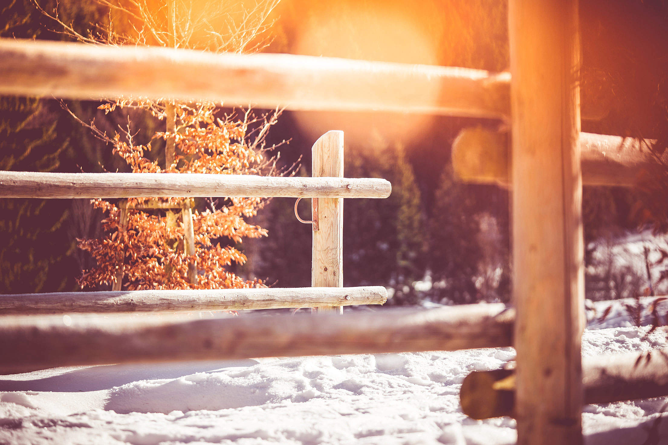 Wooden Fence on Mountain Path in Winter Free Stock Photo