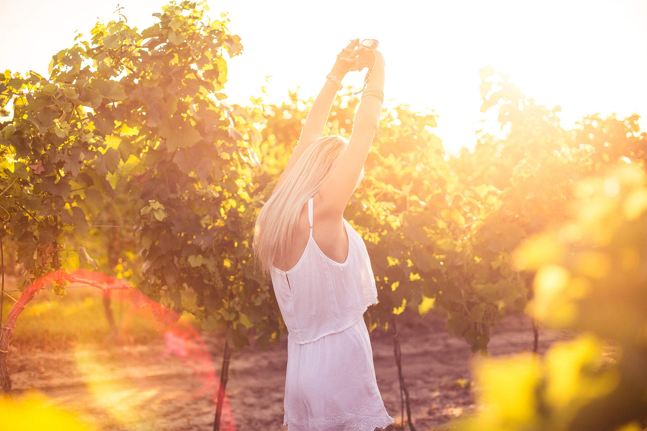 Young Girl Enjoying Happy Moments and Dancing in Vineyard Free Stock Photo