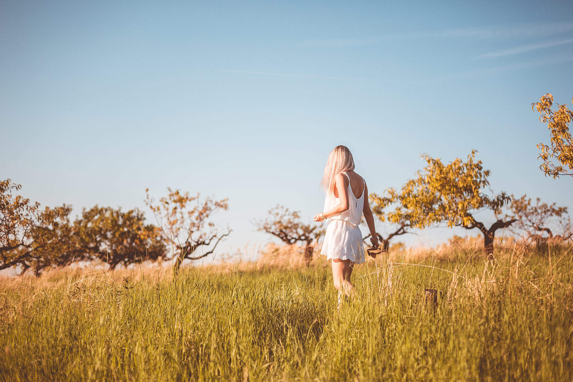 Young Girl Lost in a Meadow Free Stock Photo
