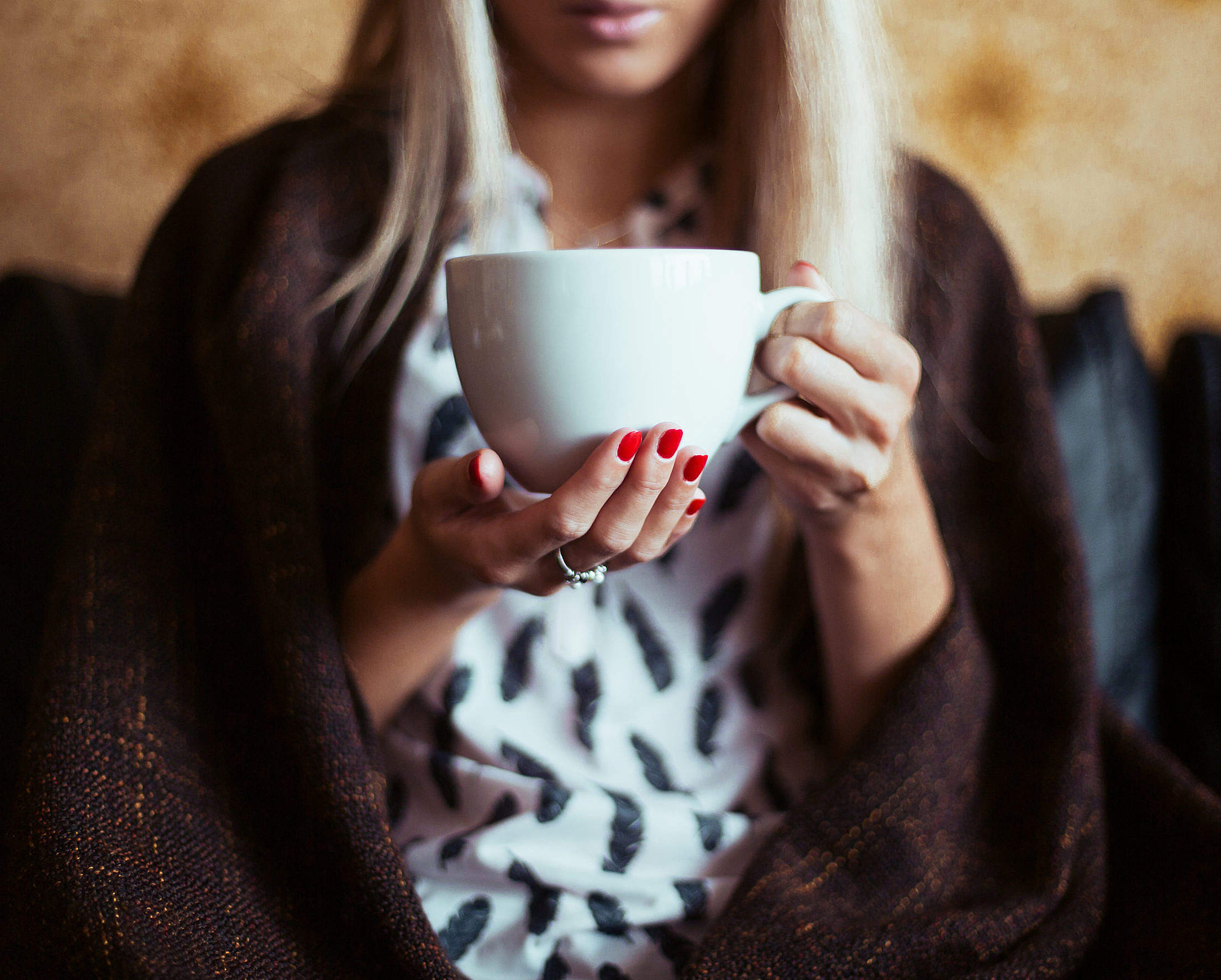 Download Young Woman Drinking a Tea Free Stock Photo