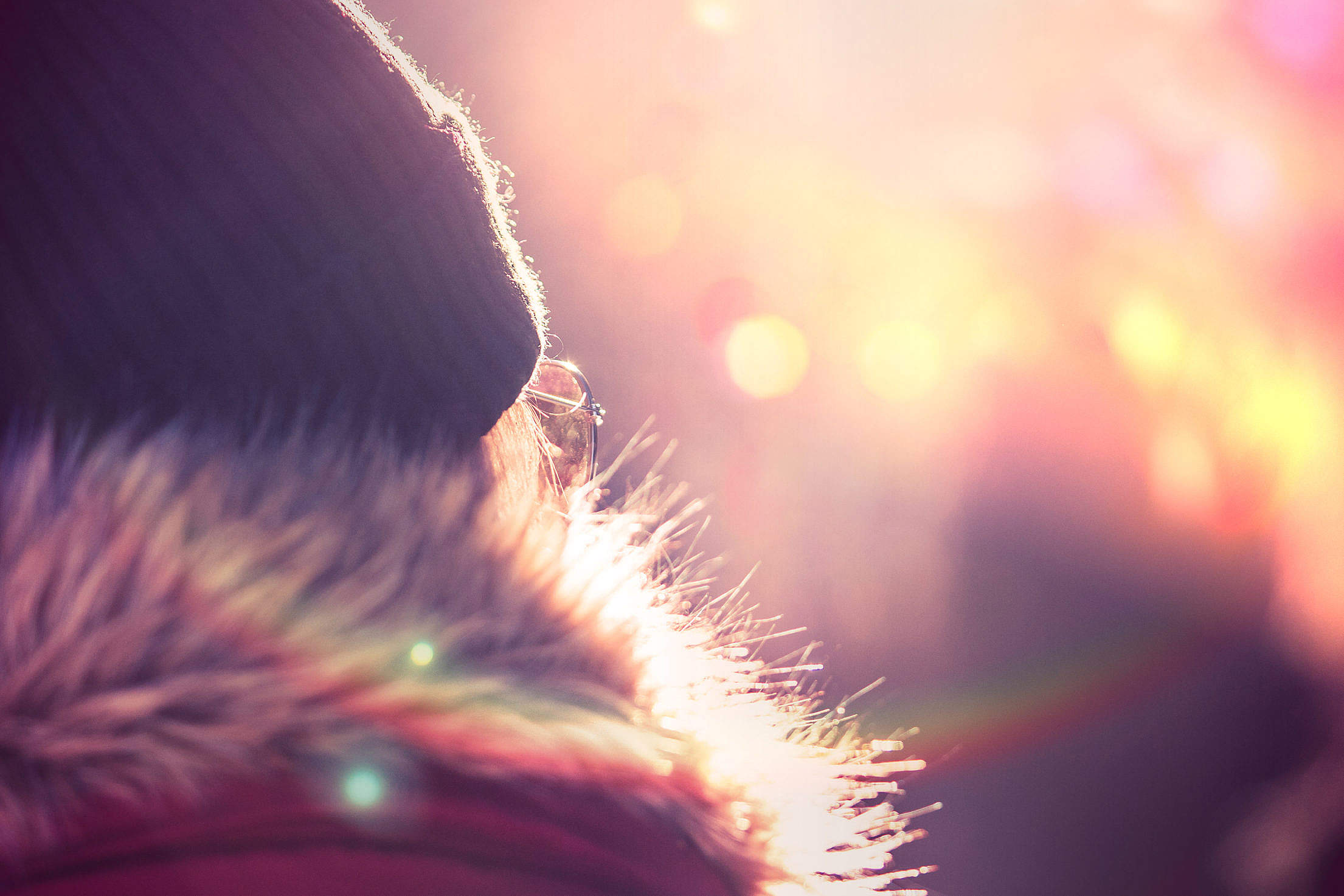 Young Woman in Winter Jacket and Hat Free Stock Photo