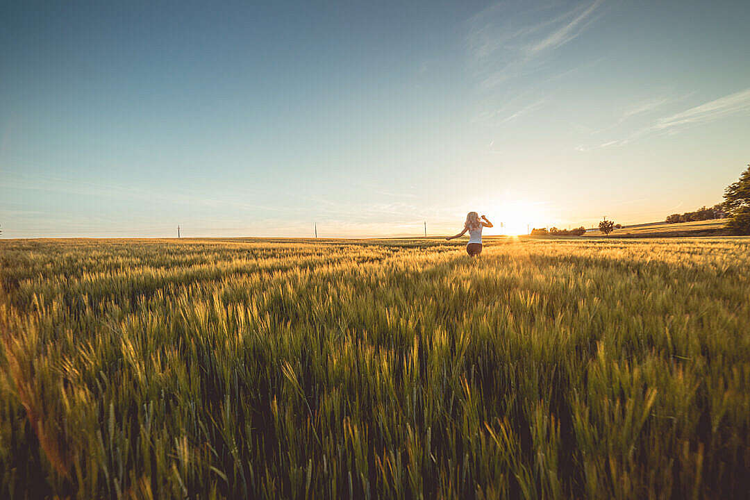 Download Young Woman Running Through Wheat Field on Sunset FREE Stock Photo