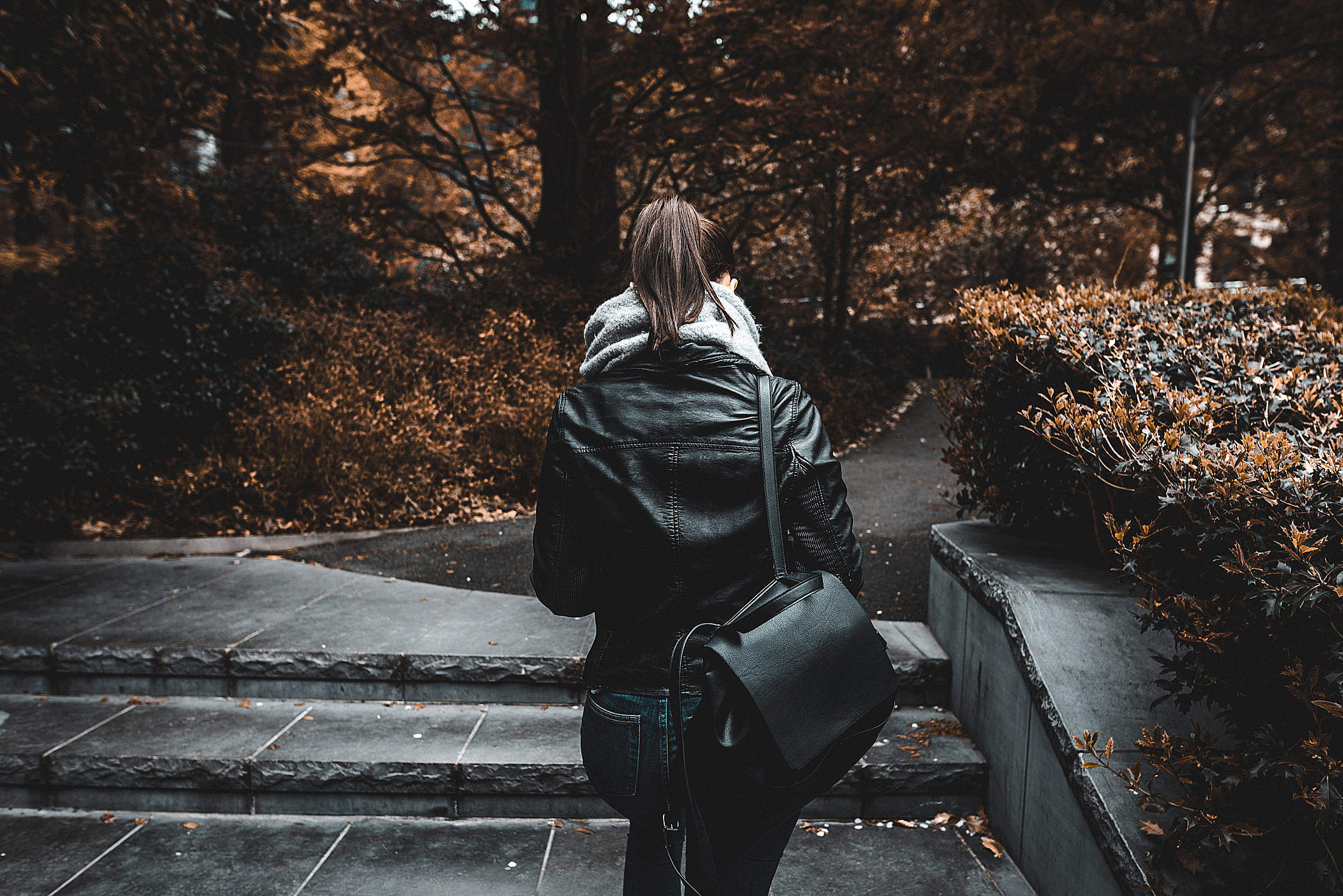 Young Woman Walking Alone in Park Free Stock Photo