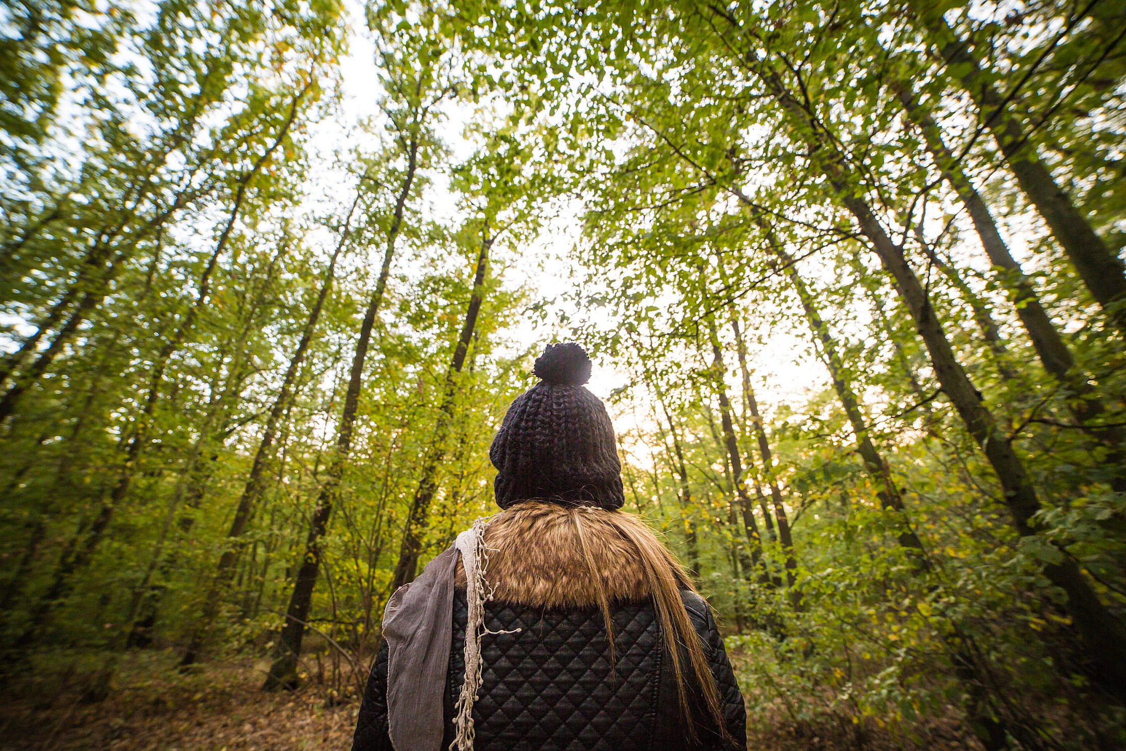 Young Woman Walking Through The Forest Free Stock Photo